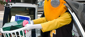 Picture of Buzz unloading a car at on move-in day.